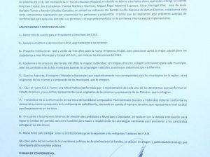 Carta compromisos candidatos CDE PAN 2015
